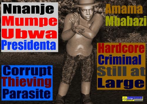 amama mbabazi,uganda prime minster